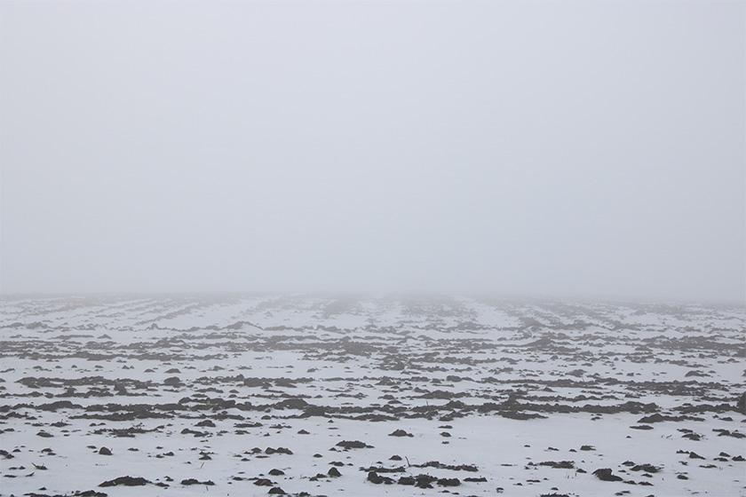 natur.tåge.mark.foto.mette.bundgaard